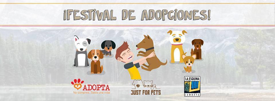 Front-Row-Festival-de-adopciones-Navidad-2017